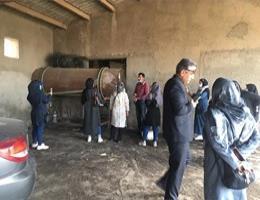 بازدید گروه آموزش مرکز به همراهی خانم دکتر فتحی از مزرعه تولید ورمی کمپوست