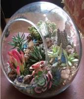 دوره آموزشی تراریوم ساخت گل شیشه ای